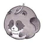 u_tachitoraさんのプロフィール画像