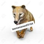 tasmanianwolf3104さんのプロフィール画像