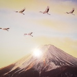 yh_jp_39さんのプロフィール画像