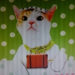 masumi_y2002さんのプロフィール画像