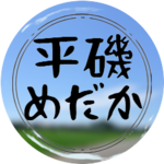 hiraisomedakaさんのプロフィール画像