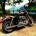 tokyo_world_wideさんのプロフィール画像