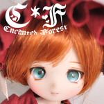 alice_in_enchanted_forestさんのプロフィール画像