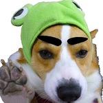 odd_sight_0126さんのプロフィール画像