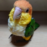 kmsakura25さんのプロフィール画像