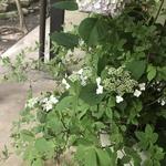 motosa_kさんのプロフィール画像