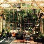 vandaka_plantsさんのプロフィール画像