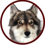 jqcss937さんのプロフィール画像