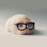 masakichieastさんのプロフィール画像