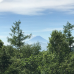 masa_komugiさんのプロフィール画像