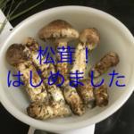 toshiy1220さんのプロフィール画像