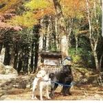 u_hiro17390さんのプロフィール画像