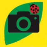 ハローカメラさんのプロフィール画像