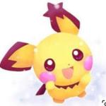 shirayuki007a_aさんのプロフィール画像