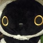 kazurika777さんのプロフィール画像