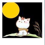 yuragiplusさんのプロフィール画像