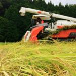 hoshibara_farmさんのプロフィール画像