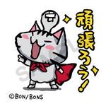 tanukihousenagasawaさんのプロフィール画像